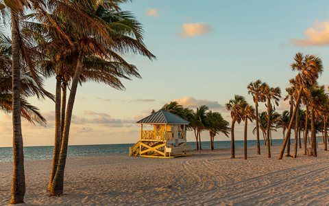 Spend the Day At Crandon Park