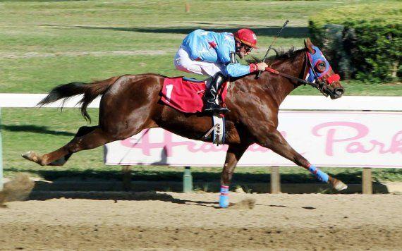 Hialeah Park Racing & Casino