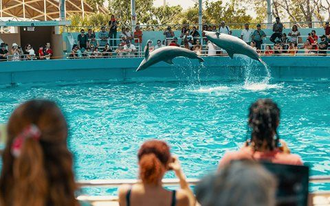 Visit These Top Miami Attractions