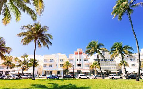 Miami Beach Vacation in Your Own Backyard