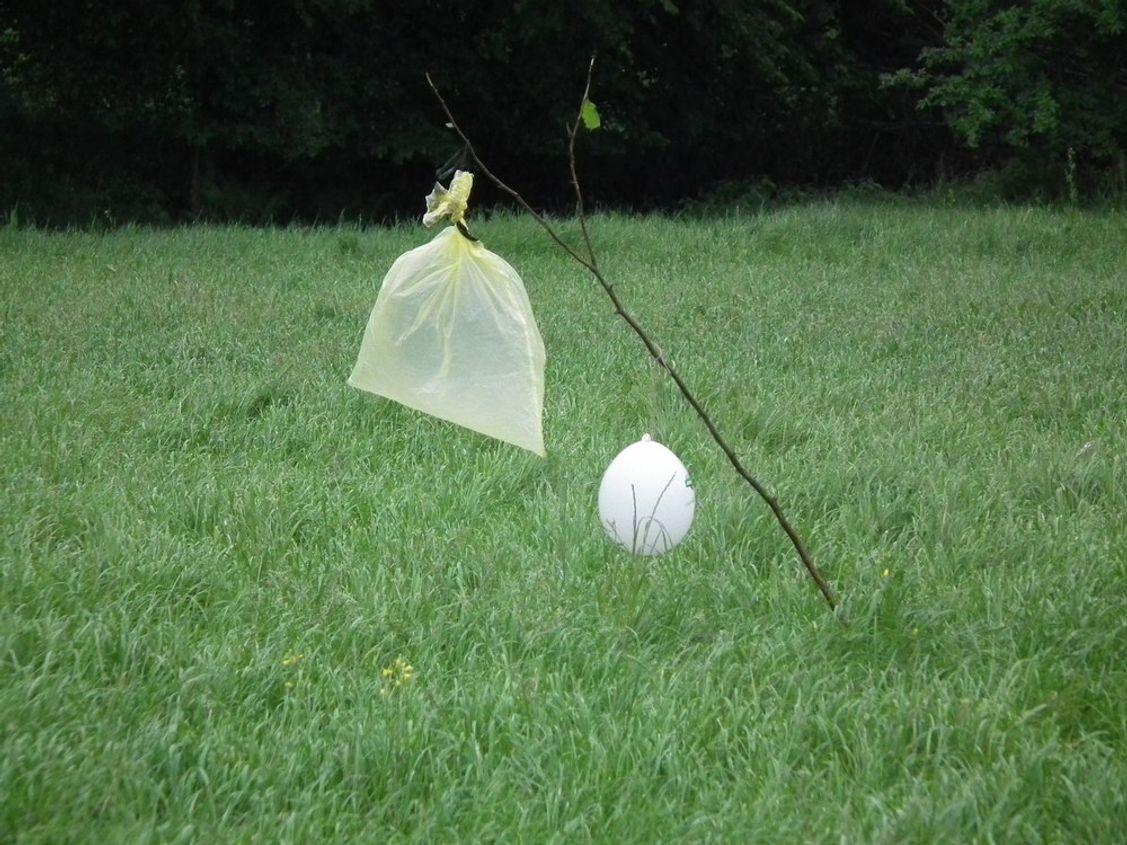 Diese Rehgespenster sind kostengünstig, einfach zu basteln und bei uns effektiv, um Ricken aus den Wiesen zu vertreiben. So bleiben die Kitzen am Leben.