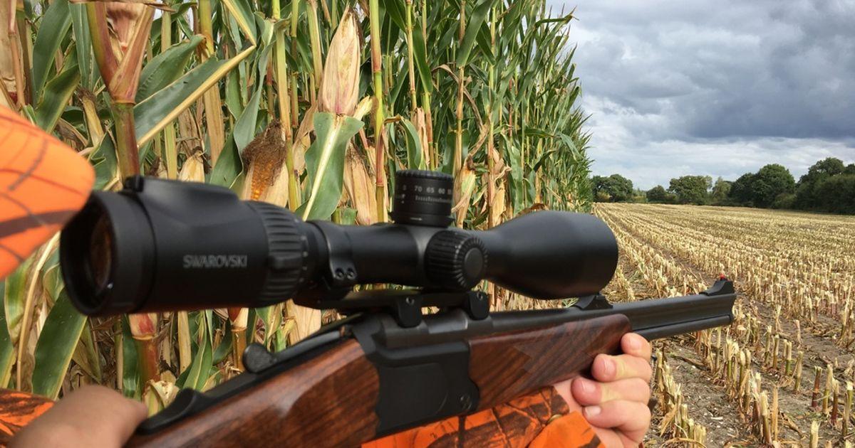Swarovski Z8i Entfernungsmesser : Jagd freizeit swarovski z i l zielfernrohr