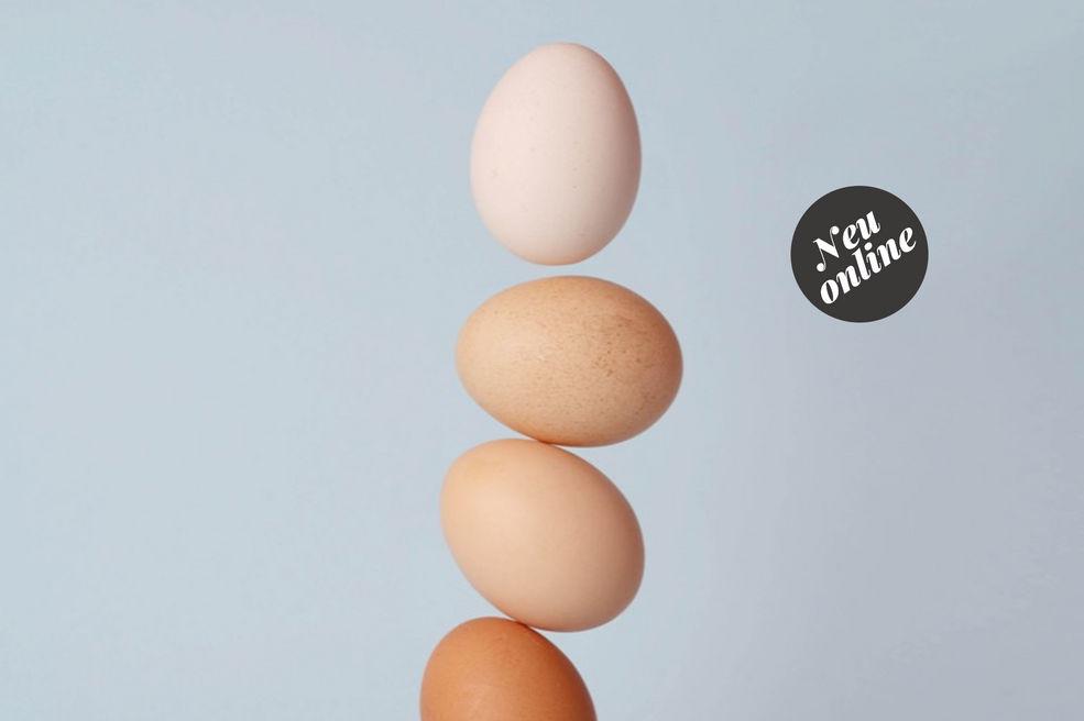 Egg kurse fr singles Christliche partnervermittlung aus schrems