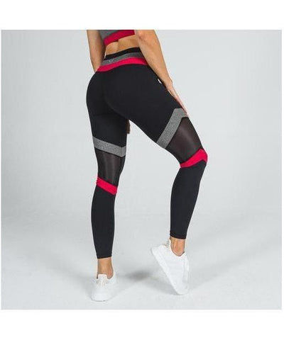 Squat Wolf Palette Leggings Black-Squat Wolf-Gym Wear
