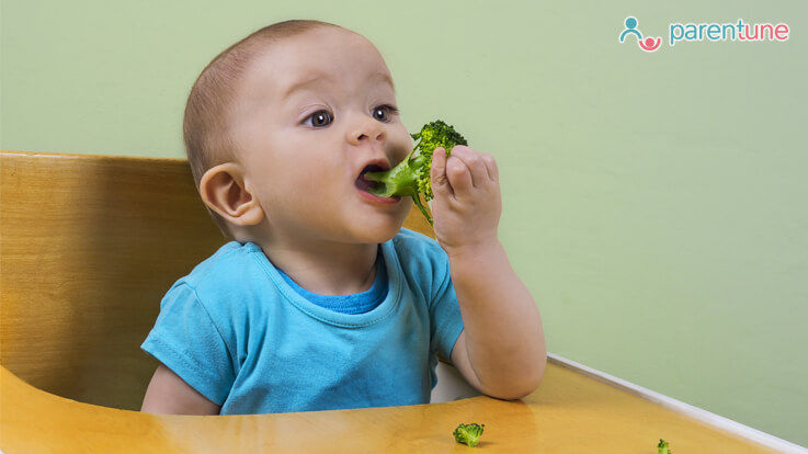 10 Finger foods for 7 month old with no teeth