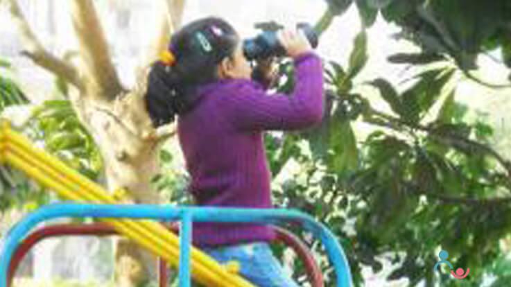 Children and bird watching