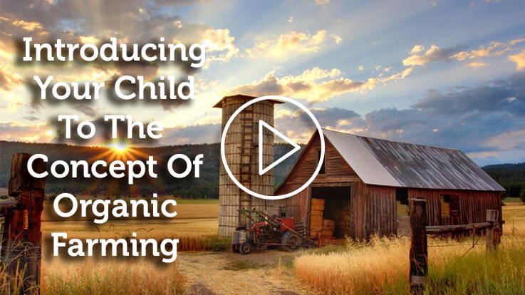Introduce Your Child The Concept Of Organic Farming
