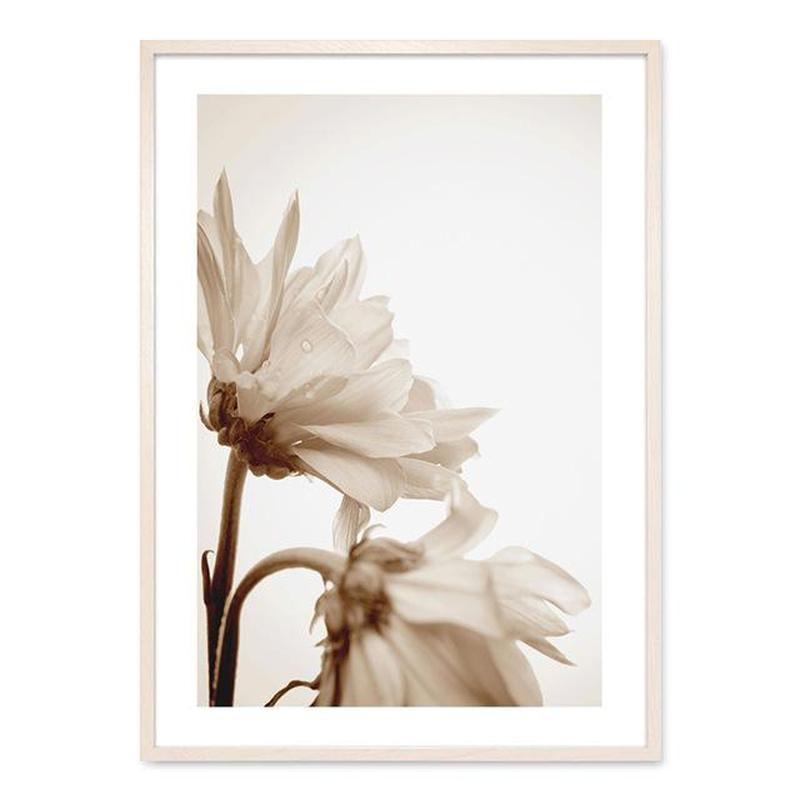 Flowers And Ballerina Canvas Prints-Heart N' Soul Home-13x18 cm no frame-Picture A-Heart N' Soul Home