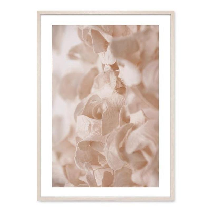 Flowers And Ballerina Canvas Prints-Heart N' Soul Home-13x18 cm no frame-Picture B-Heart N' Soul Home