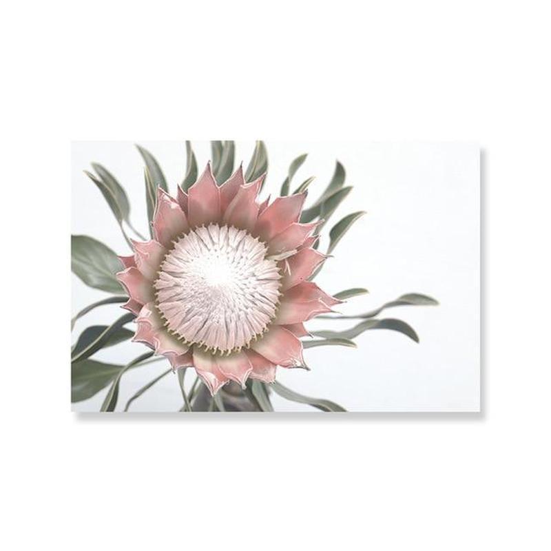Pink King Protea Series Design D Canvas Prints-Heart N' Soul Home-A4 21x30 cm no frame-Heart N' Soul Home