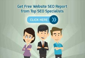 seo specialists india