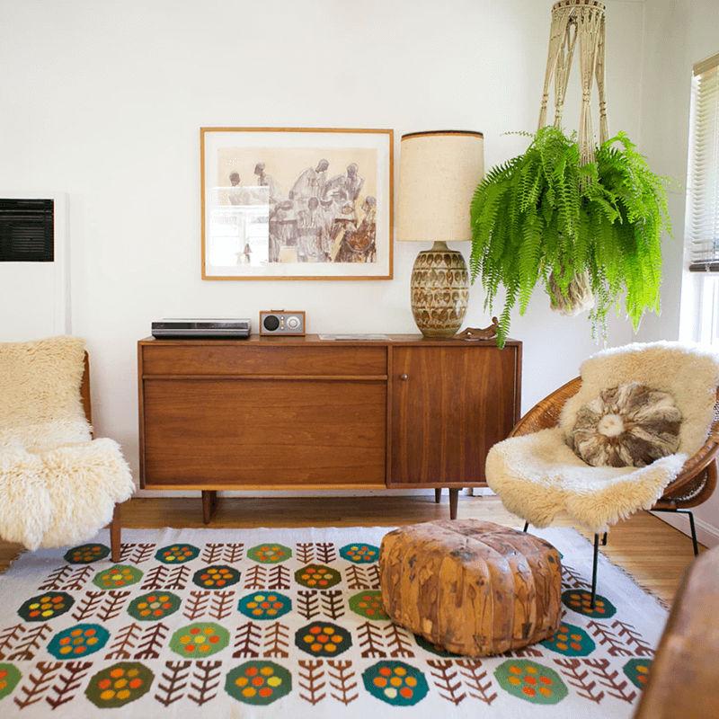 Trồng cây dương xỉ là cách hút ẩm trong phòng được yêu thích nhất