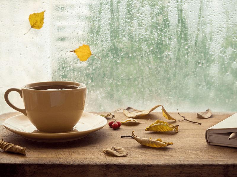 Tiện lợi hơn vào những ngày mưa
