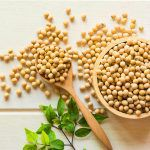 Soy: The bone strengthener