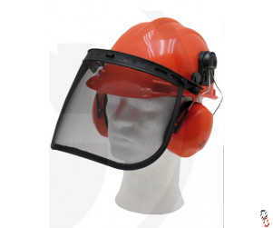 Forestry protective helmet