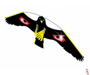 Portek Terror Kite Spare Hawk only