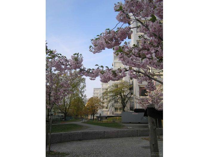 Lägenhet på Norrby Tvärgata 16 i Borås