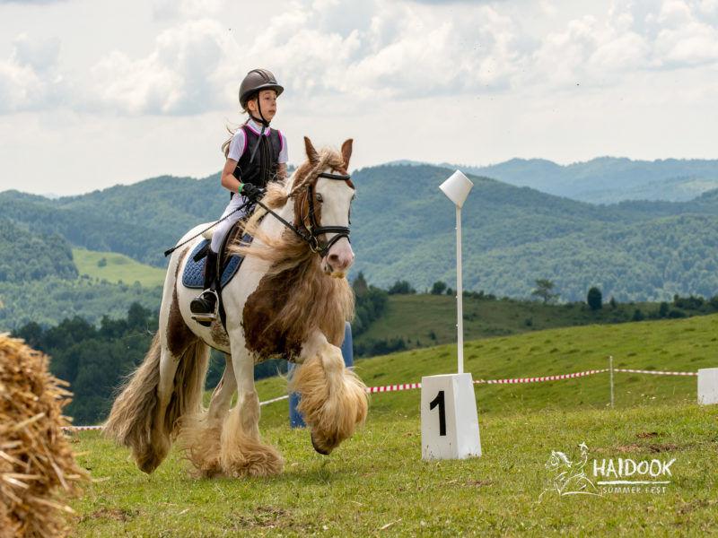 Concurs working equitation 2018_2- credit foto Valentin Hudubet