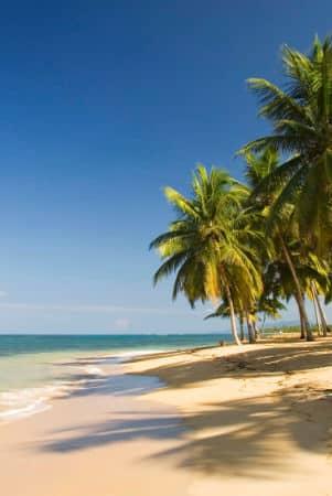 Las mejores playas en las terrenas - samana