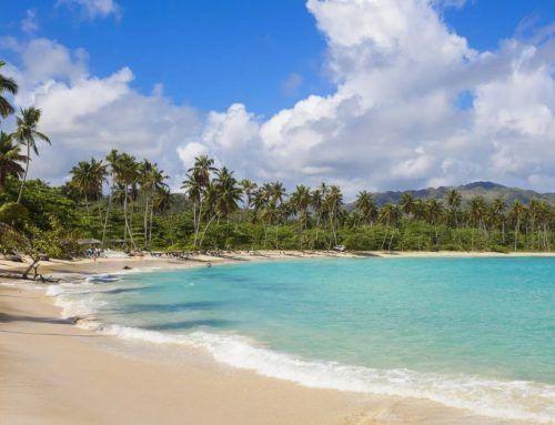 Playa Rincón: a perfect tropical landscape.