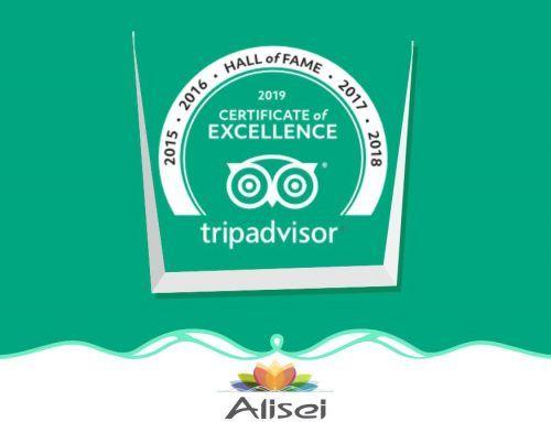 Alisei Hotel es sinónimo de excelencia.