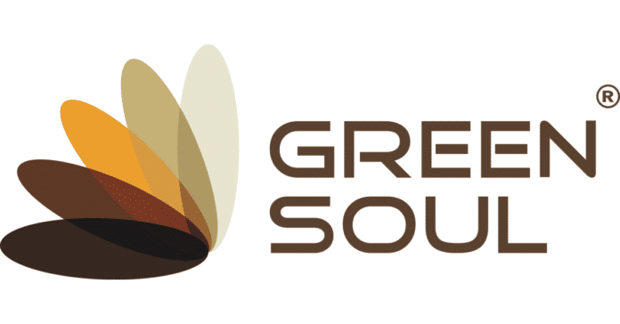 Green Soul Ergonomics
