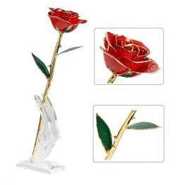 24K Gold Eternity Rose