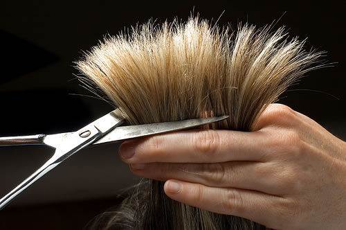 Cutting and Styling Hair