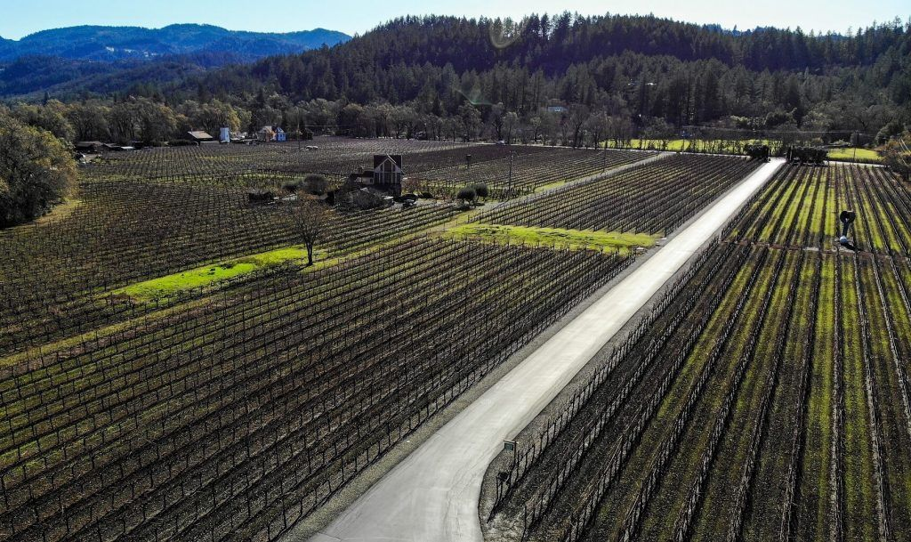 An aerial view over a Napa vineyard