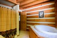 Separate shower and jetted tub