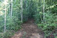 Trails To Walk Or Ride On