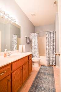 Great full bath with shower/tub combo