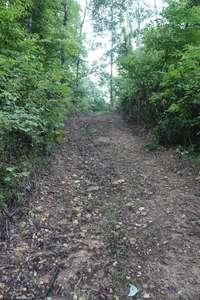 Many ATV Trails