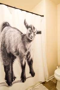 Shower/tub combo