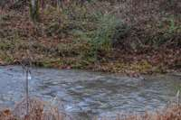 Nice creek on the property