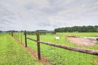 Back pasture behind barn.