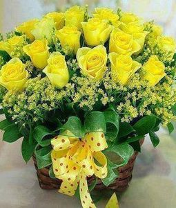 24 Yellow Roses in basket