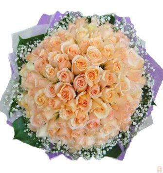 100 Fresh Pink Roses Bunch