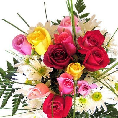 Mix Color Roses