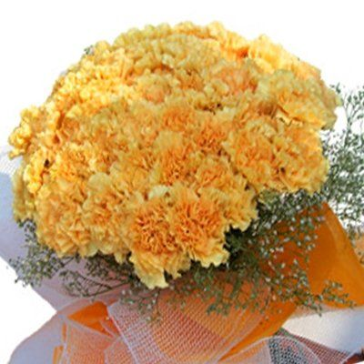 15 Yellow Carnations Bunch
