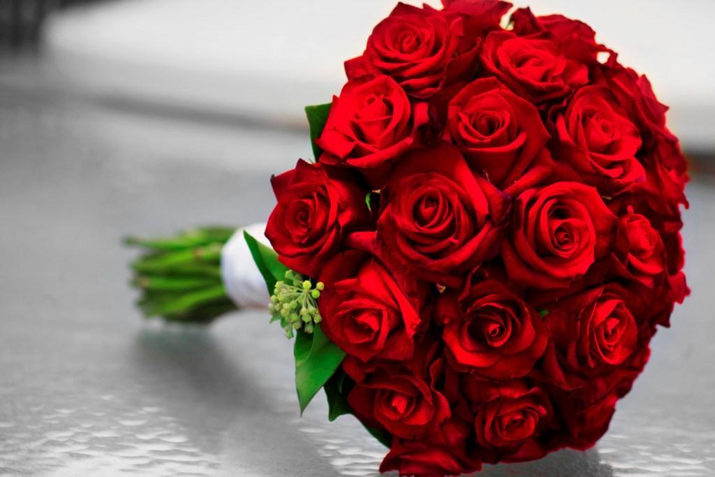 24 Rose Buds