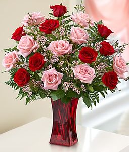 24 Pink and Red Roses in Vase
