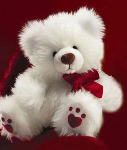 22 inch White Teddy