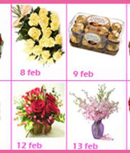 Valentine Week Gift 8 Day