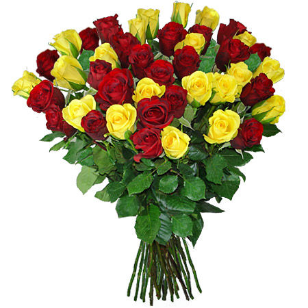 50 Red & Yellow Roses Bunch