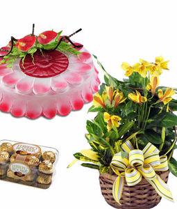 Cake Flowers and Chocolates