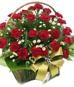 30 Red Carnations Round Basket