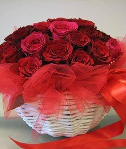 20 red rose round basket