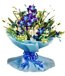 6 Blue Orchids Bouquet
