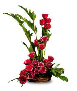 20 Red Roses Arrangement in Cane Basket